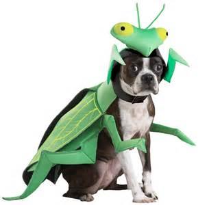 Praying Mantis Dog Costume