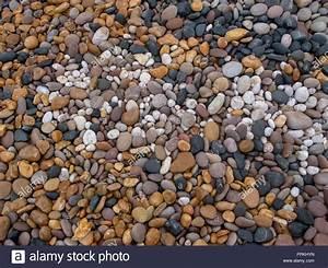 Arten Von Sandstein : arten von stein stockfotos arten von stein bilder alamy ~ Watch28wear.com Haus und Dekorationen