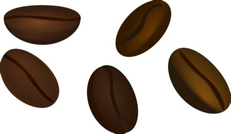 Shop for the perfect coffee seeds gift from our wide selection of designs, or create your own personalized gifts. Black-brown seeds clipart - Clipground