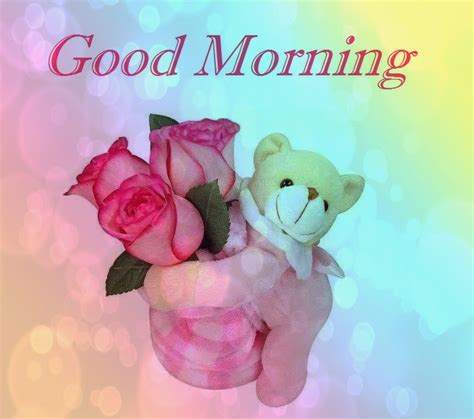 purpal flowers gud morning images  special friends