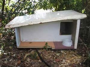 Cabane Pour Chat Exterieur Pas Cher : a chacun son toit ~ Farleysfitness.com Idées de Décoration