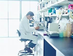 Neural Transplantation Laboratory