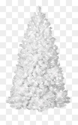 snowflake tree png images vectors  psd files