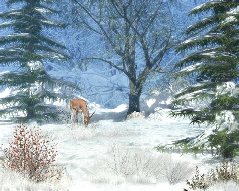 Animated Winter Wallpapers Free - free animated winter wallpaper 2017 grasscloth wallpaper