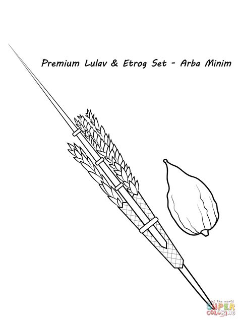 lulav  etrog coloring page  printable coloring pages