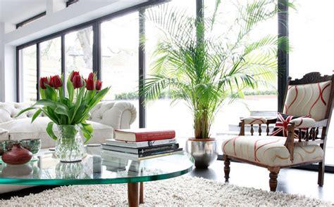 bedroom design ideas best indoor house plants trees enliven your indoors