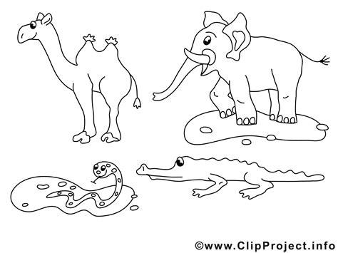 afrikanische tiere ausmalbilder zum ausmalen