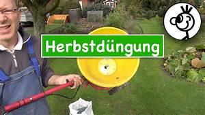 Rasen Düngen Herbst : rasen d ngen im herbst tipps und tricks youtube ~ Watch28wear.com Haus und Dekorationen