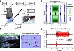 Looking Beyond The Imaging Plane  3d Needle Tracking With