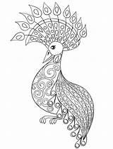 Peacock Coloring Pages Adults Sketchite Source sketch template