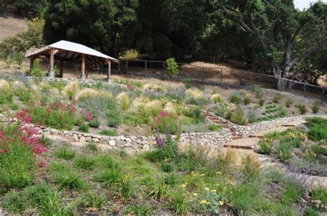 landscape erosion hillside landscape to prevent erosion home ideas pinterest