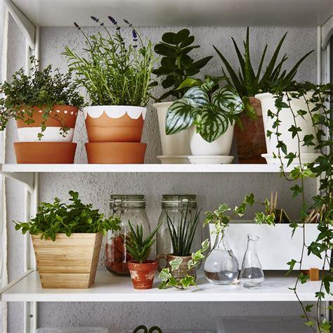 cuisine grasse jardin intérieur 15 inspirations pour l 39 adopter