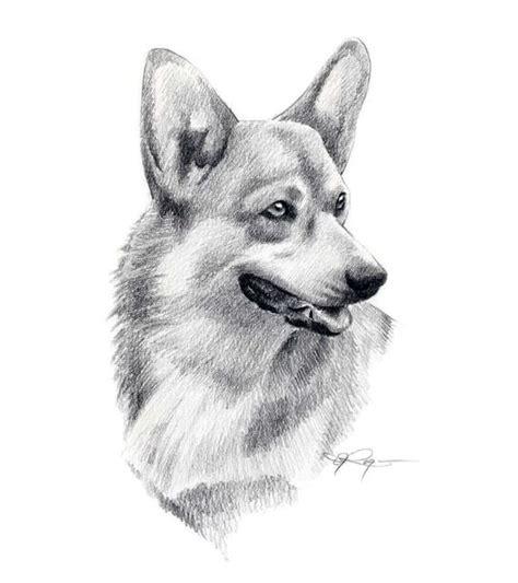 welsh corgi dog pencil drawing art print signed  artist dj