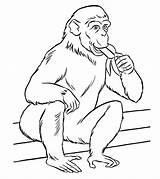 Zoo Coloring Animals Animal Printable Momjunction Cdn2 Sheets Cartoon sketch template