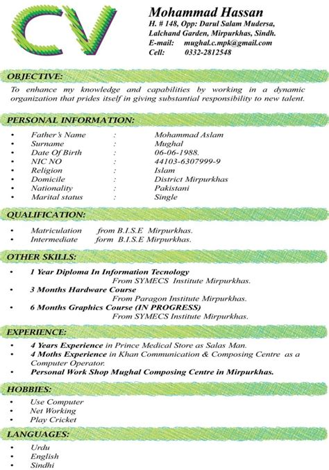 cv format 2017 for in pakistan