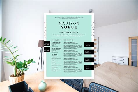 creative resume templates   stand  shop