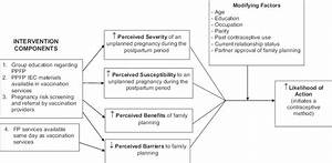 Conceptual Framework of Anticipated Intervention Effects ...