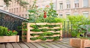 Mini Potager En Bois : un potager sur balcon c 39 est facile faire deco cool ~ Premium-room.com Idées de Décoration