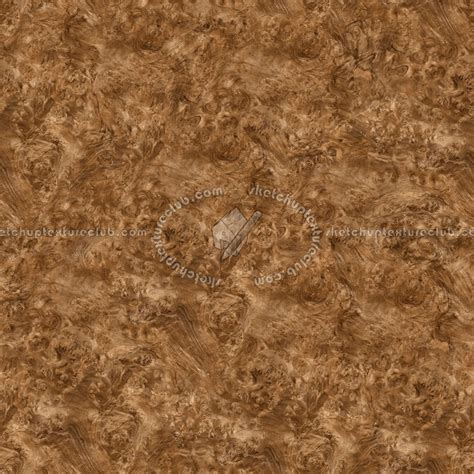 burl walnut wood medium color texture seamless