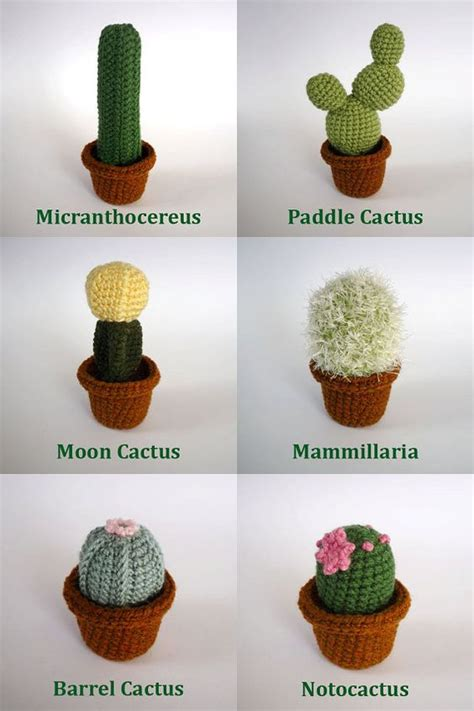 types of cacti realistic crocheted cacti and succulents by lunascrafts on etsy knitting pinterest
