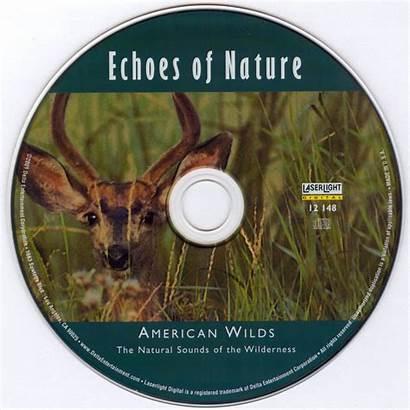 Nature American Echoes Wilds Album Music Solitudes