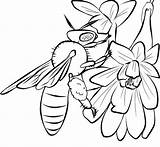 Bee Coloring Honey Bees Printable Template Drawing Templates Drawings Cliparts Flower Animal Printables Outline Cartoon Flowers Beehives Queen Popular sketch template