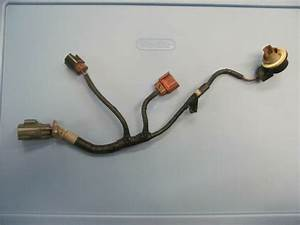 Lincoln Ls Right Passenger Headlight Wiring Harness Yw4t13076aa 2000 2001 2002