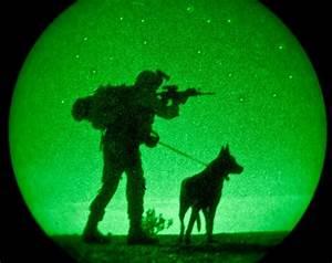 soldier dog-night vision | I've got your back (war dogs ...