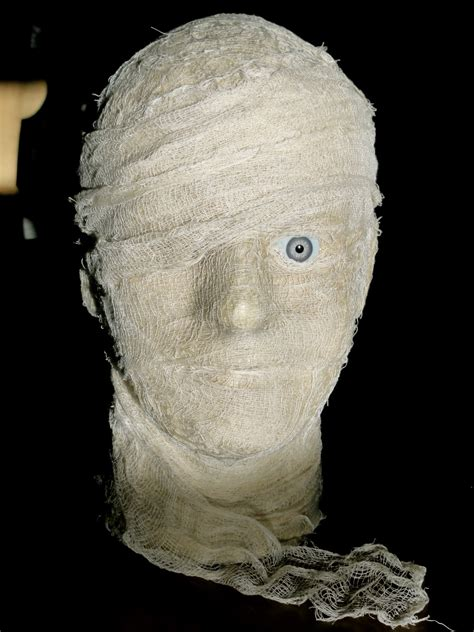 BirshyKat: Mummy Head #1...done?!