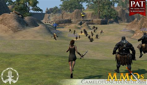 large picture windows camelot unchained preview