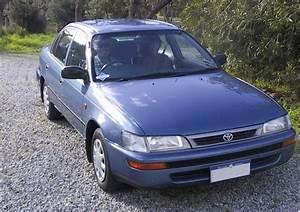 Car Toyota Corolla 1996 Owners Manual Pdf
