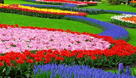 Garden Of Flowers by Honey From The Flowers Jagannath Puri Hare Krishna Movement