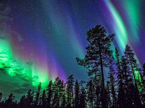 northern lights igloo kakslauttanen igloo