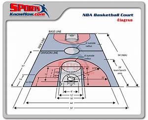 Sports Science Vs Brain Science Of Basketball  Where U2019s The