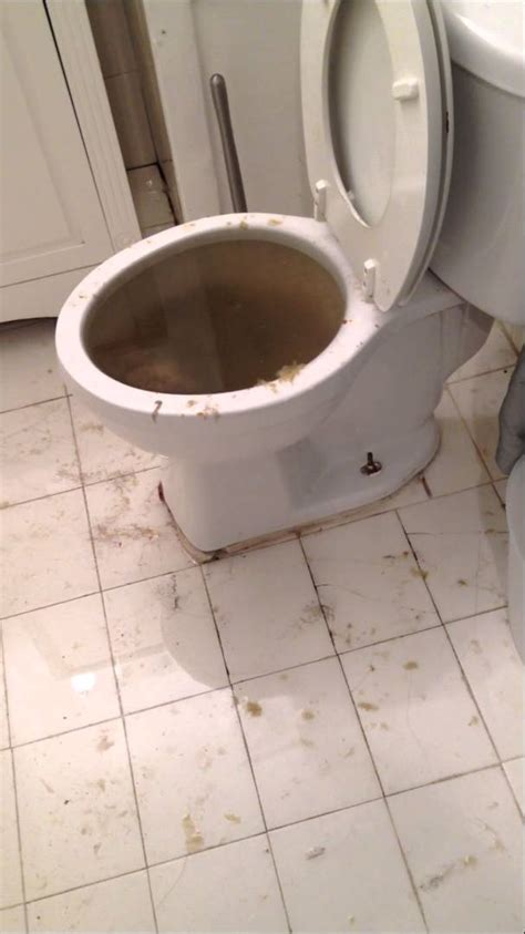 Water Damage From A Toilet Overflow