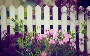 flower, garden, wallpaper, desktop, floral, wallpapers