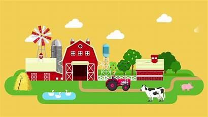 Farm Animated Cartoon Animation Tractor Cow Pig