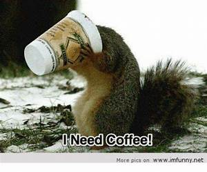 25+ Best Memes About Need Coffee   Need Coffee Memes