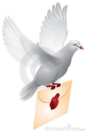 dove mail flying pigeon stock photography image