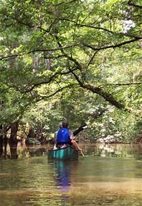 Canoeing and Kayaking - Congaree National Park (U.S ...