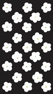 Cool Bacrounds Black And White Flowers Cute Iphone 6 Wallpaper