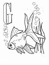 Goldfish Coloring Printable Alphabet Letters Animal sketch template