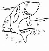 Coloring Shark Baby Pages Print sketch template