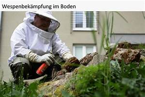 Wespennest Im Boden : wespenvernichtung wespen bek mpfen und vertreiben ~ Whattoseeinmadrid.com Haus und Dekorationen