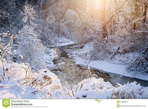 forest creek  winter storm stock photo image