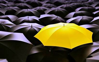 Unique Desktop Wallpapers Yellow Background Umbrella Why