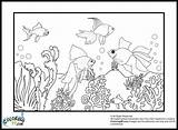 Goldfish Coloring Pages Colors sketch template