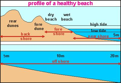 rukshan maliq s blog sand mining and storm damage