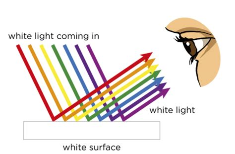 what determines the color of light what determines the color of an object what determines