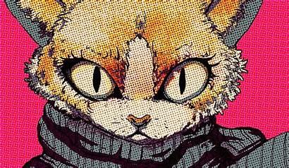 Pop Cat Desktop Wallpapers Gambar Backgrounds Animal